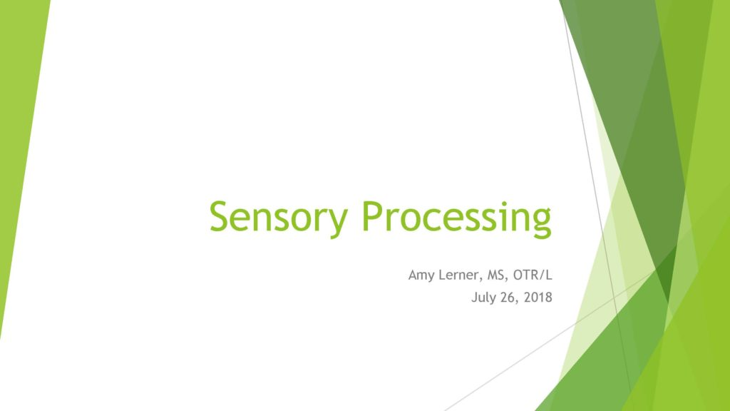 Pages from Sensory Processing. Amy Lerner